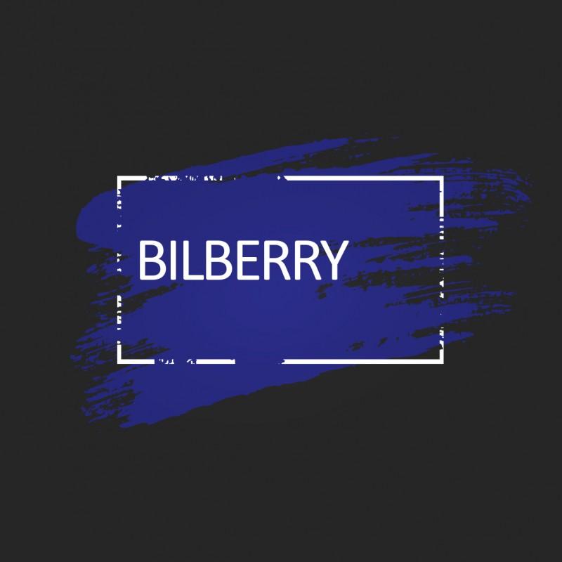 Ярко синяя краска для волос Unitones 280ml - Bilberry - Большая туба